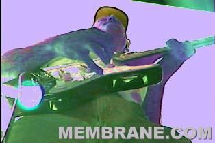 Live Reggae & Ska Music